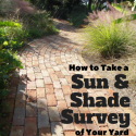 Sun & Shade Survey