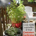 Container Gardening for Fruit & Vegetables