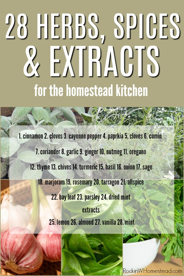 28 herbs, spices and extracts for the homestead kitchen | Rockin W Homestead
