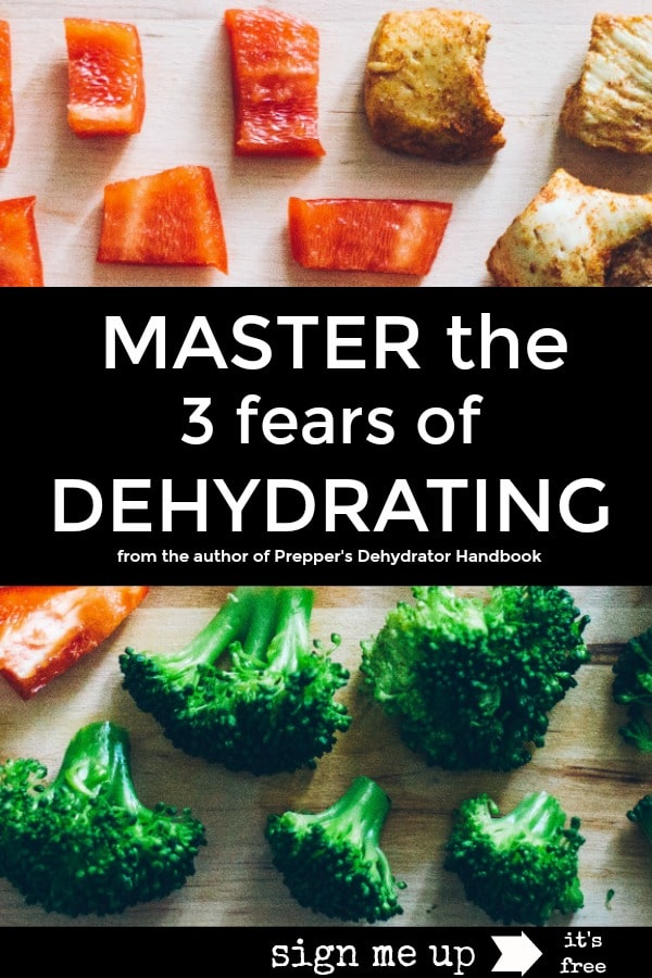 Master the three fears of dehydrating with this mini-course by the author of Prepper's Dehydrator Handbook