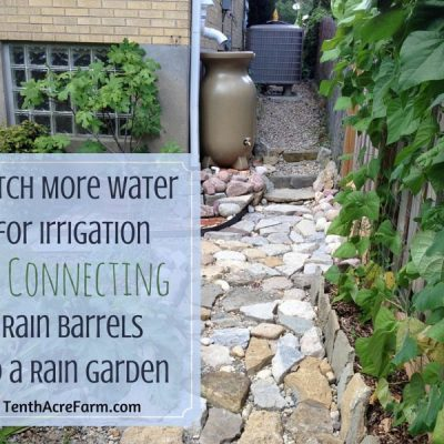 2 Ideas for Setting Up an Easy Rainwater Collection System