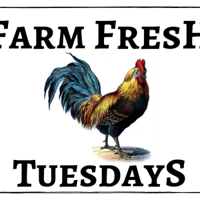 Farm Fresh Tuesdays Rooster