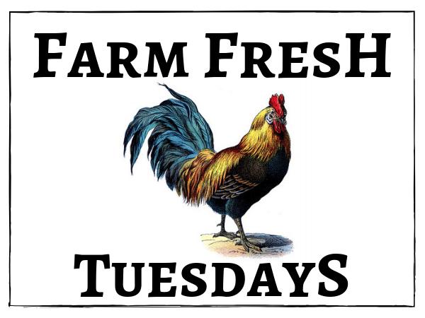Farm Fresh Tuesdays Rooster