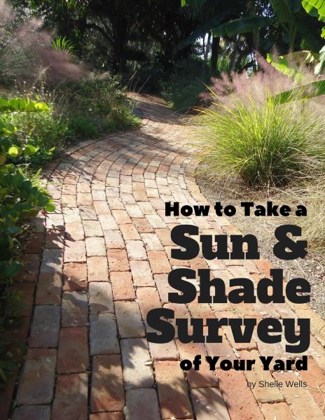 Sun & Shade Survey