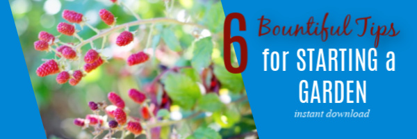Get the free report - 6 Bountiful Tips for Starting a Garden this year. Your amazing and productive garden is within reach!