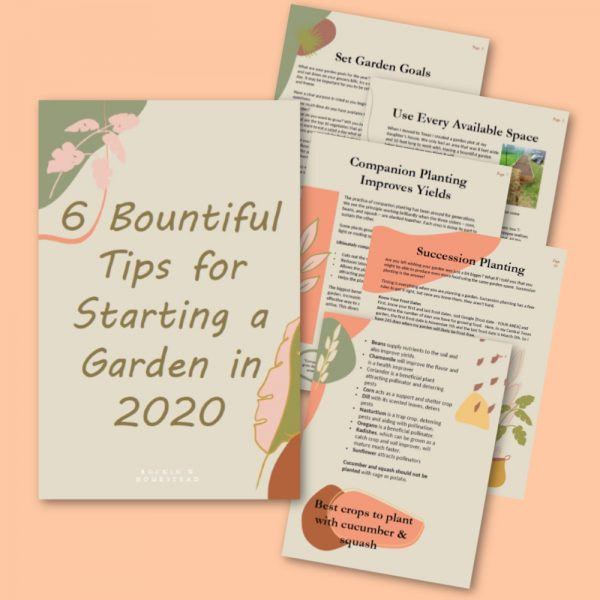 A graphic layout of the offer. Get the free report - 6 Bountiful Tips for Starting a Garden this year. Your amazing and productive garden is within reach!