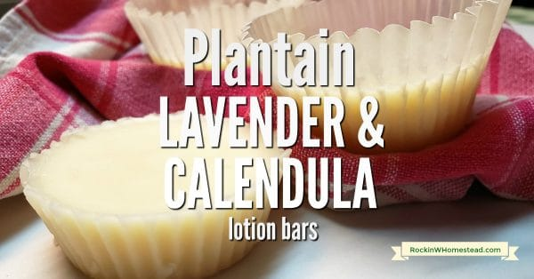 Lotion bars are healthy for the skin and easy to use instead of regular lotion and this recipe for plantain, lavender and calendula lotion bar uses the best skin care herbs.