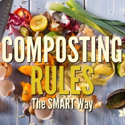 When you are beginning to use kitchen scrap in the compost bin you'll need to know these 5 simple SMART composting rules.