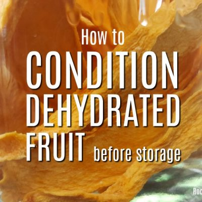 How to Condition Dehydrated Fruit Before Storage