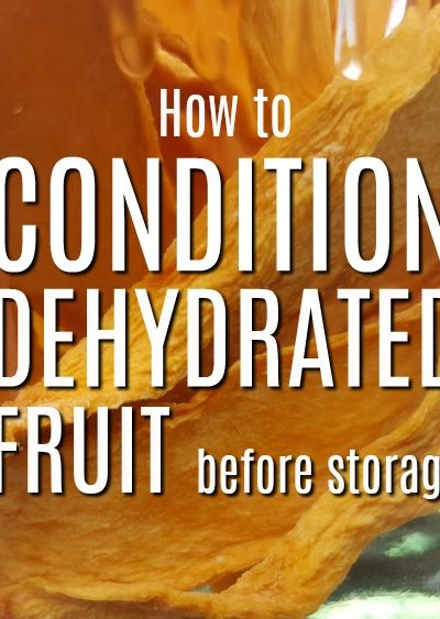 How to condition dehydrated fruit. To obtain a longer shelf life with dehydrated fruit, we use a process called conditioning to make sure our dried food is ready for storage | Rockin W Homestead