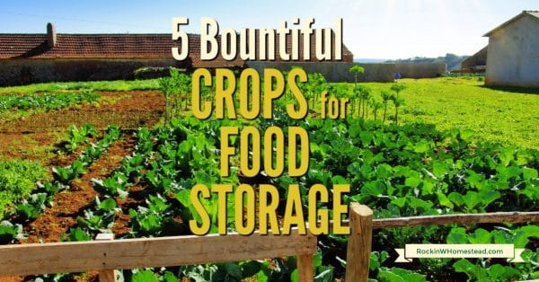 a rural garden 5 bountiful crops for food storage
