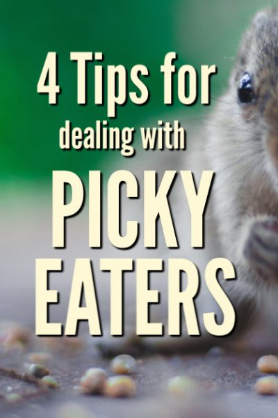 Dealing with picky eaters doesn'talways have to be frustrating at meal time. Use these four tips to encourage them to eat and save your sanity.