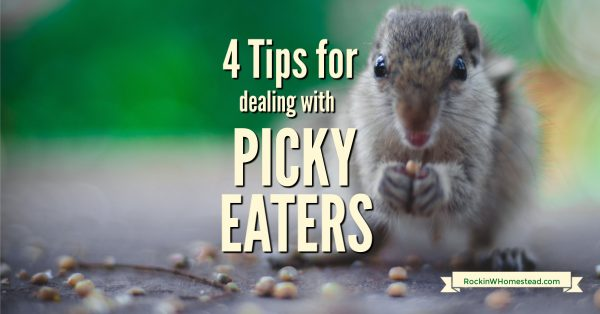 Dealing with picky eaters doesn't always have to be frustrating at meal time. Use these four tips to encourage them to eat and save your sanity.