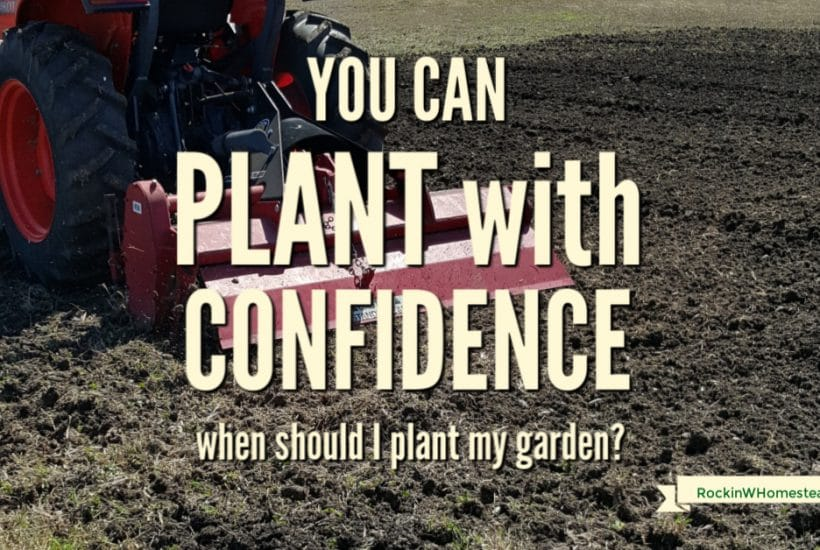 It can be tricky to decide when to plant vegetables in your area. These four factors will help you plant your garden with confidence.