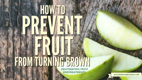 How to Prevent Fruit from Turning Brown