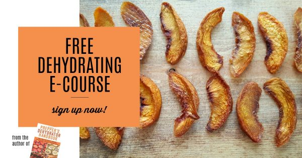 Sign up for the Free Dehydrating ECourse from the author of Prepper's Dehydrator Handbook