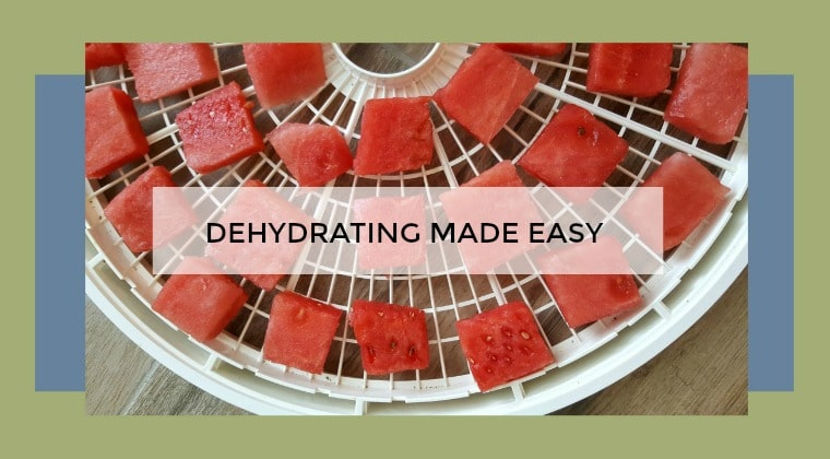 Watermelon cubes on a dehydrator tray with text overlay: Dehydrating made easy.