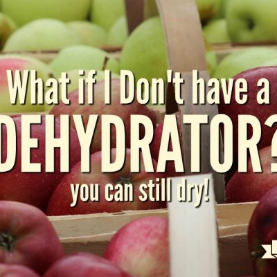 What If I don't have a Dehydrator?