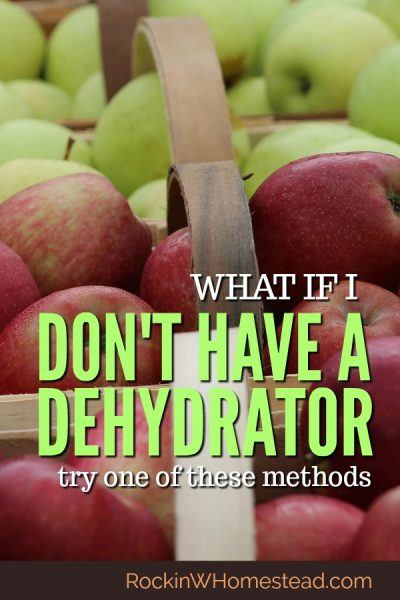 If you don't have a dehydrator, all is not lost, there are still ways to preserve food using the appliances you have at home. Try one of these four methods to get started.