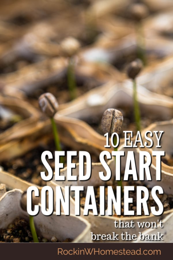 10 Get a good start on your seeds with these easy seed starting containers that won't break the bank.