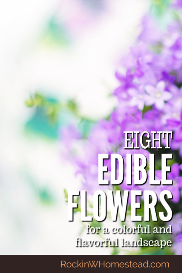 This might seem like a strange idea at first but, edible flowers have been used for centuries, both raw and cooked. Use them in your edible landscape.