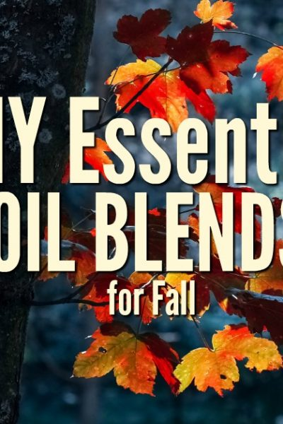 Have your home smelling heavenly with three DIY essential oil blends for fall. You can combine all natural oils with carrier oils and skip the synthetic blends.