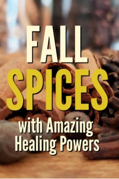 These four amazing spices are used all times of the year, but you'll find that the healing powers of fall spices work especially well when your immune system has a chance of being compromised with seasonal cold and flu.