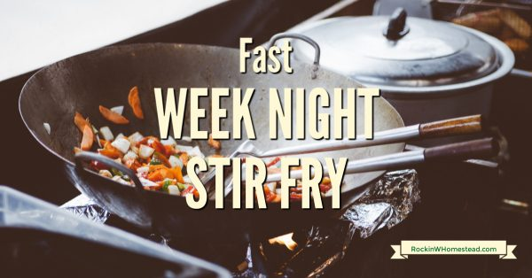 [recipe] Fast week night stir fry
