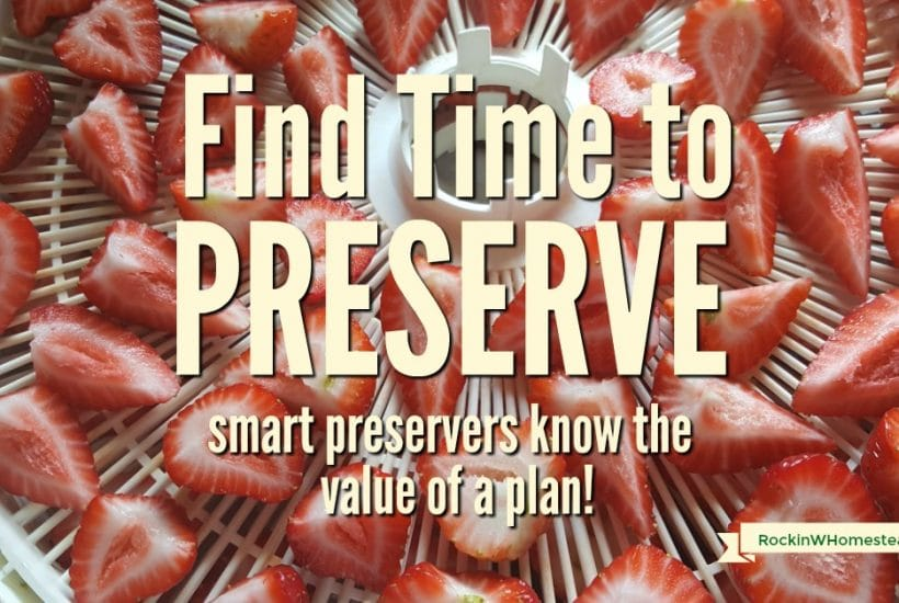 We all want to have healthy food on the table, but finding time to preserve it can be difficult. Smart preservers know the value of time management as they make room in their schedule.