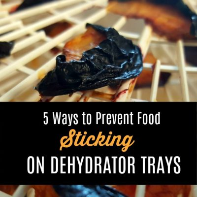 5 Ways to Prevent Food from Sticking to Dehydrator Trays