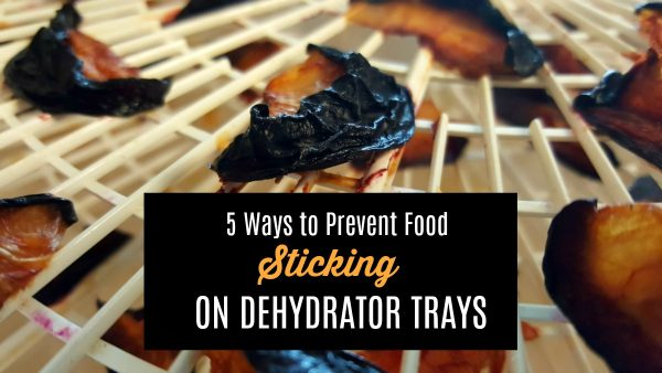 Do you have a problem with food sticking to dehydrator trays? Here are 5 ways to prevent it and what to do if you find yourself with a ruined batch.