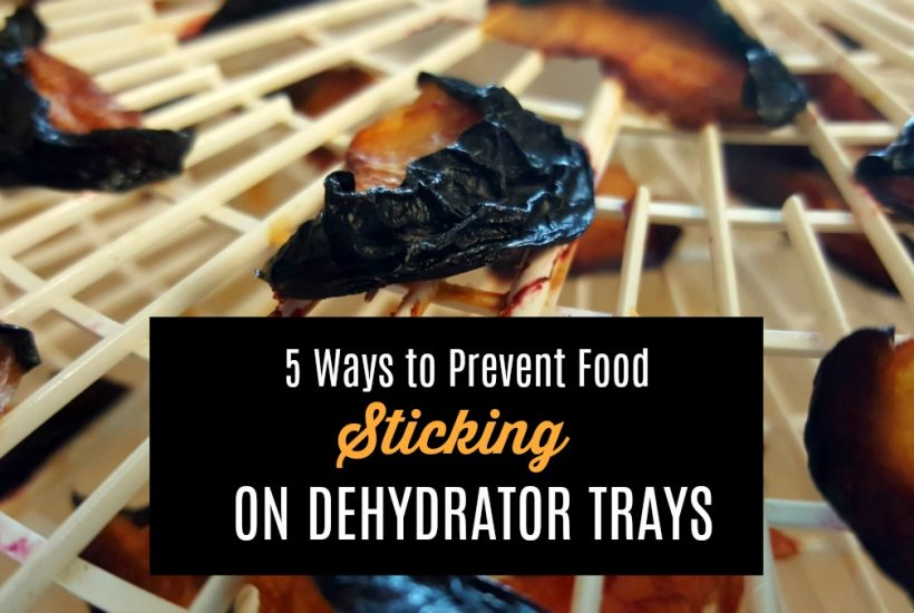 Do you have a problem with food sticking to dehydrator trays? Here are 5 ways to prevent it and what to do if you find yourselfwith a ruined batch.