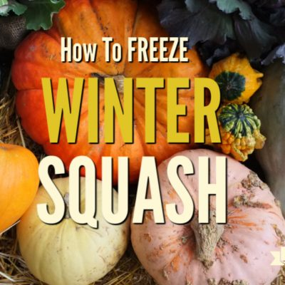How to Freeze Winter Squash
