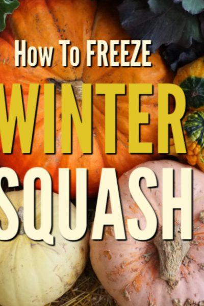 winter squash varieties