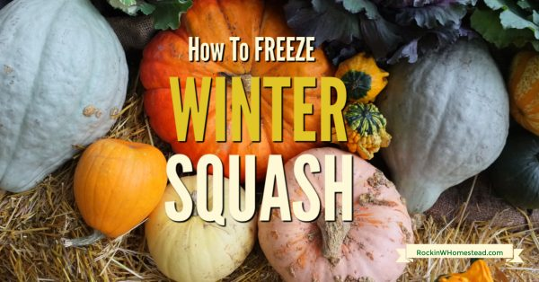 winter squash varieties