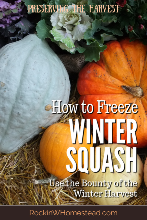 winter squash varieties. Although winter squash is available for most of the year, certain varieties are only here in the fall. Learn how to freeze winter squash for food storage.