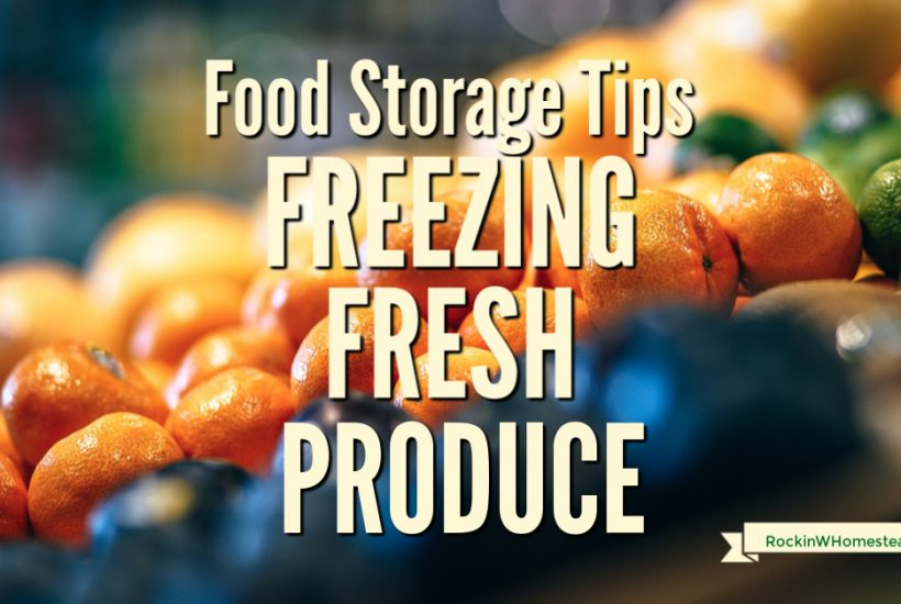 One of the quickest things to do when you have more fresh produce than you know what to do with is to freeze it. Simple tips for freezing fresh produce.