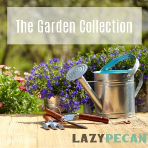 The garden collection at Lazy Pecan