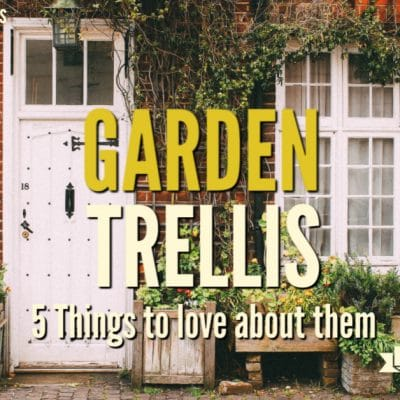 5 Things to Love about Garden Trellis on Farm Fresh Tuesday