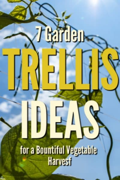 Be sure to utilize at least one garden trellis in your overall garden plan. There are many benefits to growing a least some of your vegetables vertically.