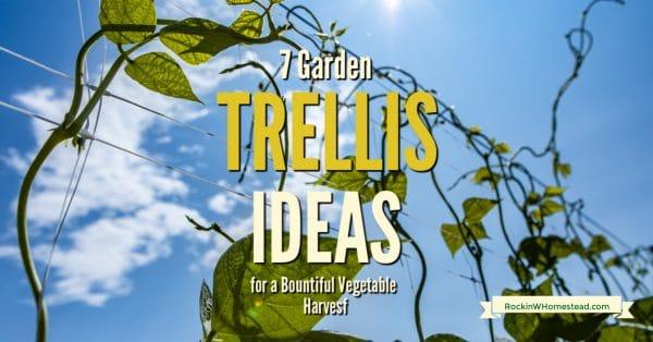 7 Garden Trellis Ideas For A Bountiful Vegetable Harvest Rockin