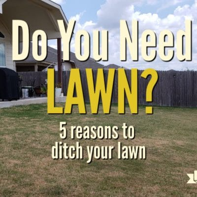 5 Reasons to Get Rid of Your Lawn