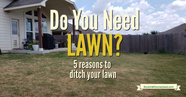 If you've ever considered getting rid of your lawn, these 5 reasons might be the encouragement you need. Rethink your lawn with these 5 tips.