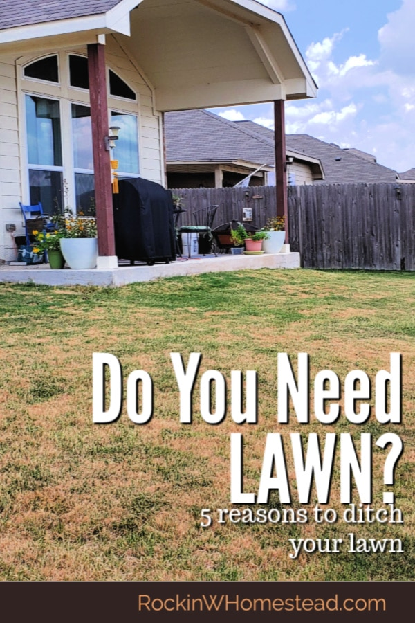 the backyard lawn. should you get rid of it?