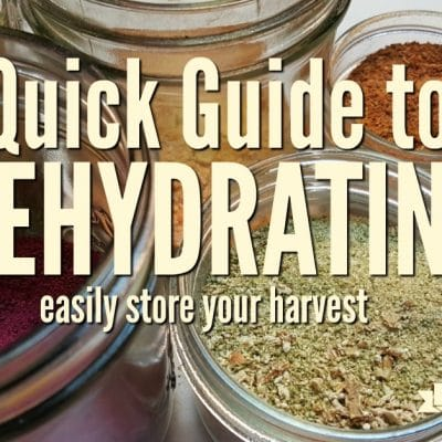 A Quick Guide To Getting Started Dehydrating
