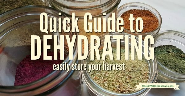 Getting started dehydrating by making snacks with fruit and vegetables. It won't take long to get comfortable with the process and see your family enjoy it.