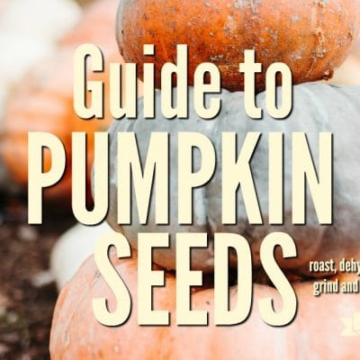 Guide to Pumpkin Seeds