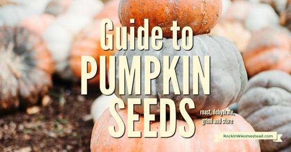 This guide to pumpkin seeds will teach you how to roast, dehydrate, grind and store pumpkin seeds for healthy eating. Make and preserve them the way you like and save.