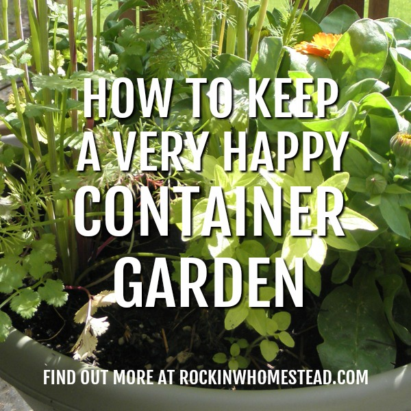 If you live in an apartment or have a small yard, growing in containers may be the only way you can have fresh herbs and vegetables. These container gardening tips will help your plants be happy and producing all season long. | Rockin W Homestead