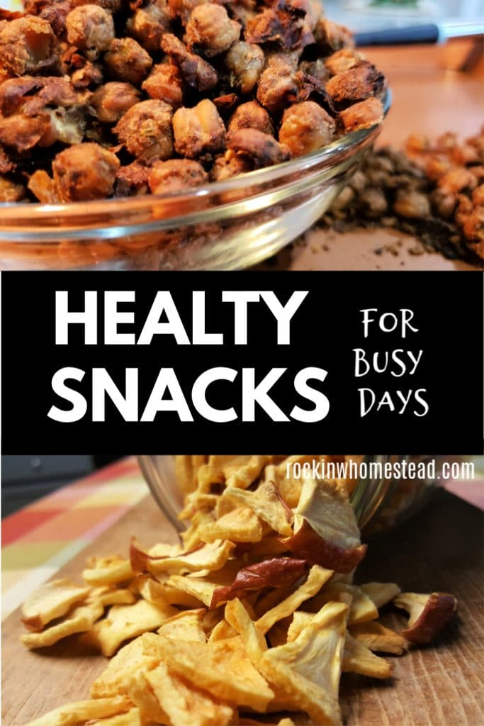 Looking for healthy snacks tomake ahead for busy days? These 5 recipes are easy to make and take with you